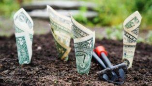 お金を育てる投資